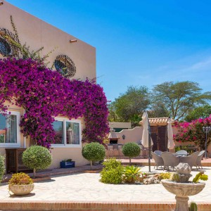 Casa Phoenix Courtyard